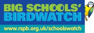 big schools birdwatch190315