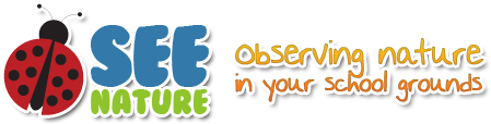 See Nature | Observing Nature in your School Grounds | The Bird Box Project Logo