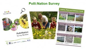 polli-nation-survey